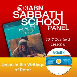 """2017 Q2 - Lesson 8: """"Jesus..."""
